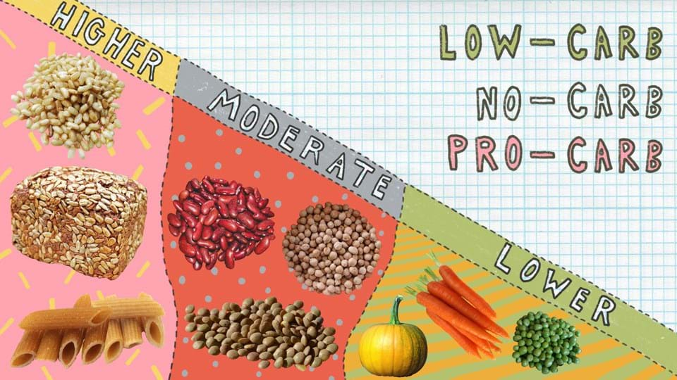 Low-carb, no-carb or pro-carb: what the science says – Fit Planet